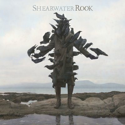 shearwater_rook