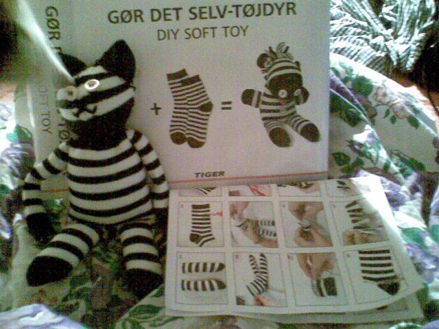 zebra cat